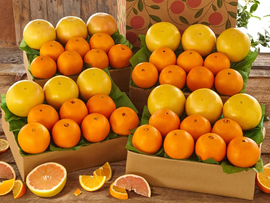 buy navel oranges r