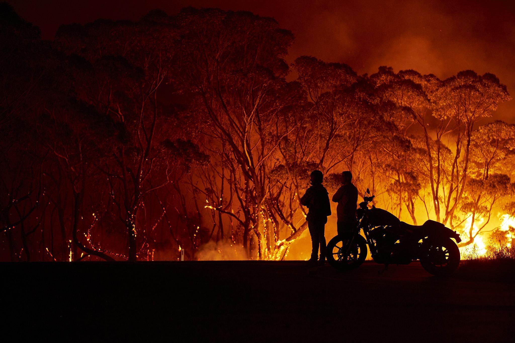 australia bushfire 11