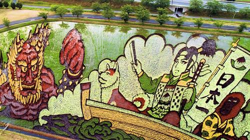 Οι Ιάπωνες τερματίζουν τη φαντασία «ζωγραφίζοντας» τα χωράφια τους