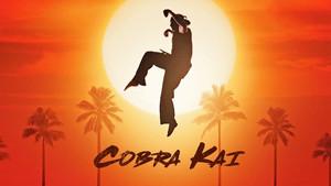 Όλα όσα γνωρίζουμε μέχρι τώρα για τη νέα τηλεοπτική σειρά του Karate Kid