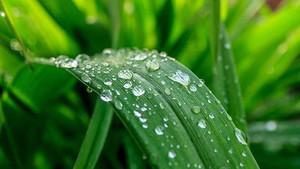 Πώς μπορούμε να ενισχύσουμε την περιβαλλοντική συνείδηση και ευαισθητοποίηση;
