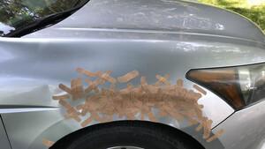Όταν τρακάρεις με το αμάξι αλλά έχεις καλλιτεχνική φύση