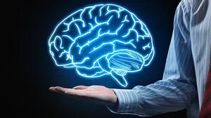 Τι κοινό έχει ο ανθρώπινος εγκέφαλος και ένα πλυντήριο ρούχων
