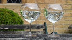 7 κορυφαία gin για να κάνεις το καλοκαίρι λίγο πιο δροσερό
