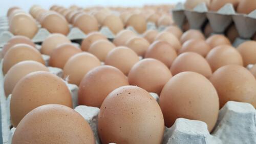 Πόσο διαρκούν τα φαγητά που έχουν αυγά στο ψυγείο;