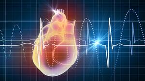 Τι δείχνουν οι παλμοί της καρδιάς σου