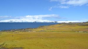 Η κλιματική αλλαγή κάνει πράσινη την Ανταρκτική