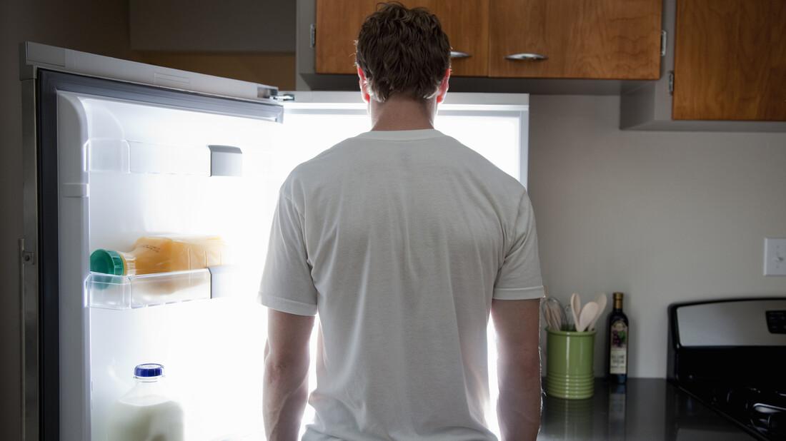 Ψυγείο: Το αιώνιο απάγκιο ενός μονήρη βίου