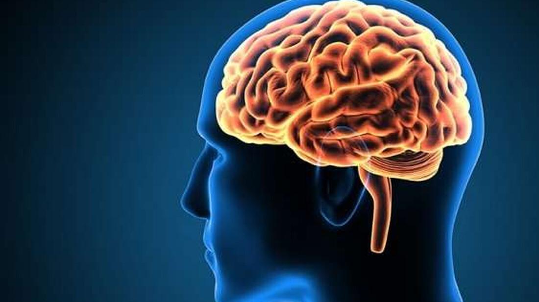 Οι τροφές που πρέπει να τρώτε για την υγεία του εγκεφάλου σας