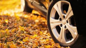 Οδήγηση το φθινόπωρο: Τι πρέπει να προσέξετε