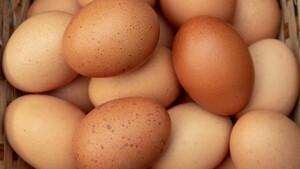 Πόσα αυγά μπορούμε να τρώμε τελικά;