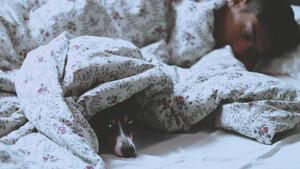 Πώς θα ανακηρυχθείς νικητής στον δύσκολο «μαραθώνιο» με το πρωινό ξύπνημα
