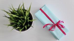 You Never Easter Alone: Πώς θα βρεις τις πιο «δυνατές» πασχαλινές προσφορές για τους αγαπημένους σου