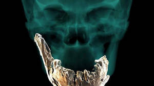 Ο Homo Nesher Ramla ίσως να είναι τελικά ο πατέρας όλων μας