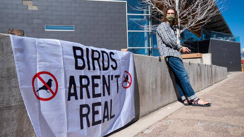 Συνωμοσιολογία: Τα πουλιά δεν υπήρξαν ποτέ πραγματικά γιατί είναι ρομπότ