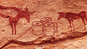 Τι χρησιμοποιούσαν οι άνθρωποι στην τουαλέτα πριν την ανακάλυψη του χαρτιού υγείας;