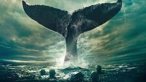Moby Dick: Ένα βιβλίο για την οικολογική καταστροφή πιο επίκαιρο από ποτέ