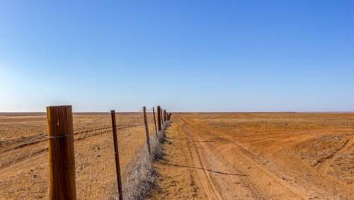 Ο μεγαλύτερος φράχτης του κόσμου έχει μήκος 3.256 χλμ